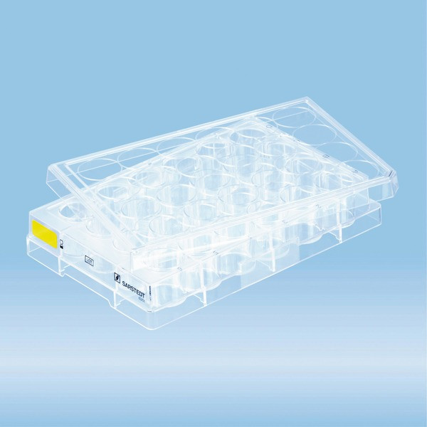 Cell culture plate, 24 well, surface: Cell+, flat base