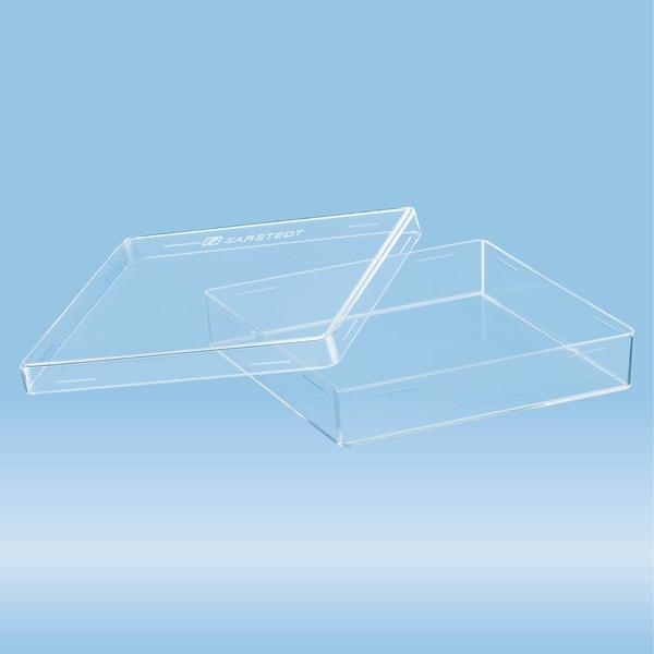 Petri dish, 100 x 100 x 20 mm, transparent, without ventilation cams