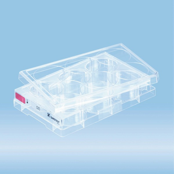 Cell culture plate, 6 well, surface: Standard, flat base