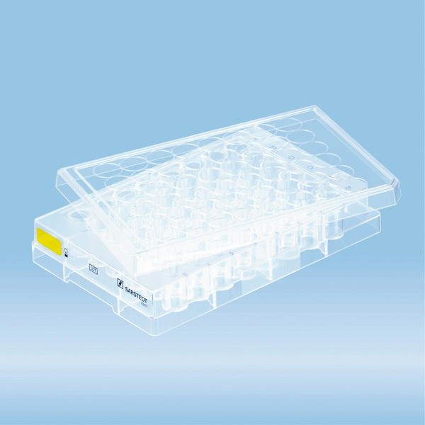 Cell culture plate, 48 well, surface: Cell+, flat base